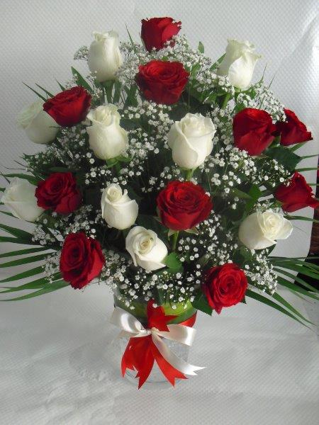 uae-20rose-redwhite.jpg